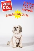 BeachParty_Zoo_Co_2015_07-002