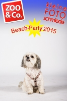 BeachParty_Zoo_Co_2015_07-003