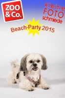 BeachParty_Zoo_Co_2015_07-004
