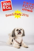 BeachParty_Zoo_Co_2015_07-005