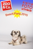 BeachParty_Zoo_Co_2015_07-006
