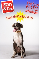 BeachParty_Zoo_Co_2015_07-008