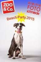BeachParty_Zoo_Co_2015_07-009