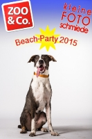 BeachParty_Zoo_Co_2015_07-010