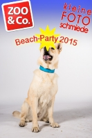 BeachParty_Zoo_Co_2015_07-011
