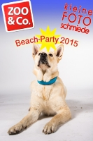 BeachParty_Zoo_Co_2015_07-012