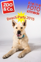 BeachParty_Zoo_Co_2015_07-013