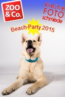 BeachParty_Zoo_Co_2015_07-014