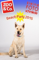 BeachParty_Zoo_Co_2015_07-016