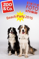 BeachParty_Zoo_Co_2015_07-019