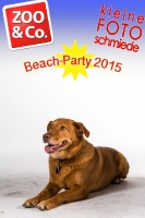 BeachParty_Zoo_Co_2015_07-029