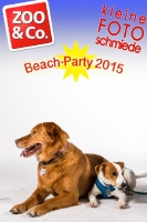 BeachParty_Zoo_Co_2015_07-030