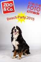 BeachParty_Zoo_Co_2015_07-033