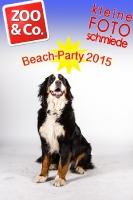 BeachParty_Zoo_Co_2015_07-034