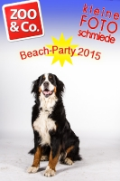 BeachParty_Zoo_Co_2015_07-035