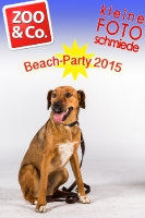 BeachParty_Zoo_Co_2015_07-036