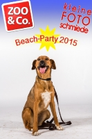 BeachParty_Zoo_Co_2015_07-037