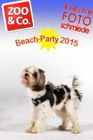 BeachParty_Zoo_Co_2015_07-040