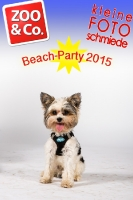 BeachParty_Zoo_Co_2015_07-041