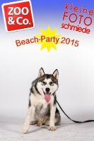 BeachParty_Zoo_Co_2015_07-045