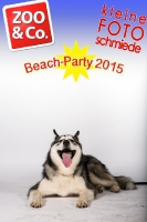 BeachParty_Zoo_Co_2015_07-047
