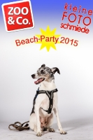 BeachParty_Zoo_Co_2015_07-048