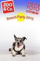 BeachParty_Zoo_Co_2015_07-049