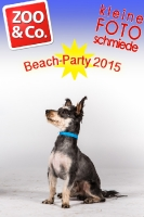 BeachParty_Zoo_Co_2015_07-051