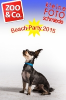 BeachParty_Zoo_Co_2015_07-052