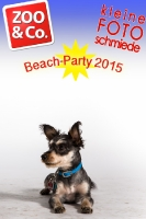 BeachParty_Zoo_Co_2015_07-053