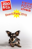 BeachParty_Zoo_Co_2015_07-054