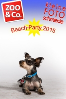 BeachParty_Zoo_Co_2015_07-055