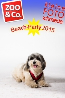 BeachParty_Zoo_Co_2015_07-061