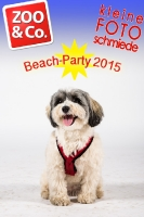 BeachParty_Zoo_Co_2015_07-062