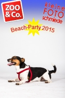 BeachParty_Zoo_Co_2015_07-063