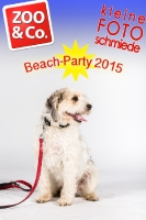 BeachParty_Zoo_Co_2015_07-069