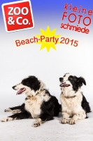 BeachParty_Zoo_Co_2015_07-071