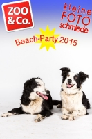 BeachParty_Zoo_Co_2015_07-073