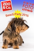BeachParty_Zoo_Co_2015_07-076