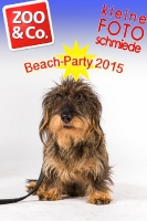 BeachParty_Zoo_Co_2015_07-077