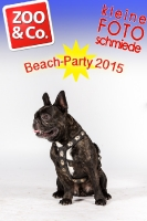 BeachParty_Zoo_Co_2015_07-078