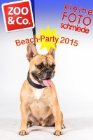 BeachParty_Zoo_Co_2015_07-083