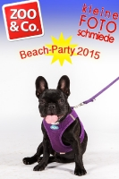 BeachParty_Zoo_Co_2015_07-084