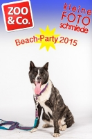 BeachParty_Zoo_Co_2015_07-091
