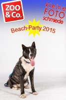 BeachParty_Zoo_Co_2015_07-092