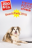 BeachParty_Zoo_Co_2015_07-095