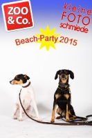 BeachParty_Zoo_Co_2015_07-099