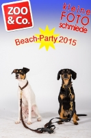 BeachParty_Zoo_Co_2015_07-102