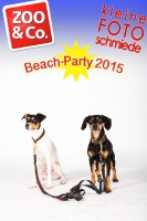 BeachParty_Zoo_Co_2015_07-103