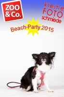 BeachParty_Zoo_Co_2015_07-104